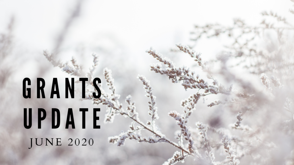 June 2020 Grants Update